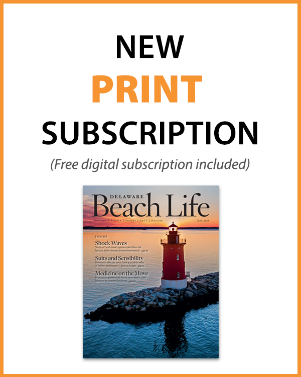 411_websubscribebutton-print Subscribe - Delaware Beach Life
