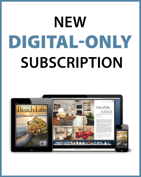 410_websubscribebutton-digitalonly Subscribe - Delaware Beach Life