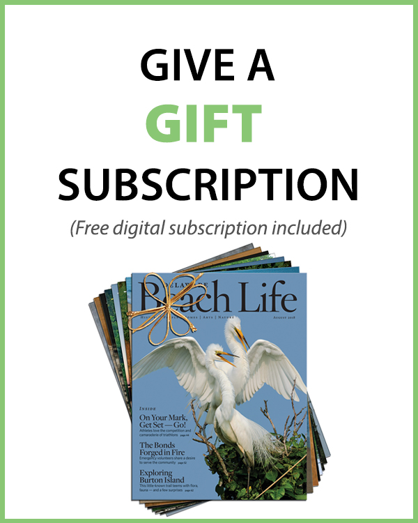 413_websubscribebutton-gift Subscribe - Delaware Beach Life